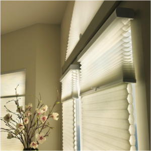 Applause Honeycomb Shades